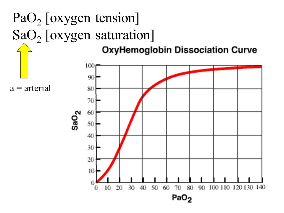 PaO2 [oxygen tension] SaO2 [oxygen saturation]